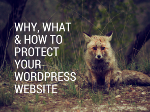 Why, What & How to Protect your Wordpress Website