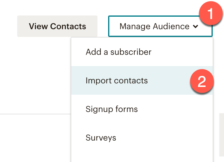 Import contacts into Mailchimp